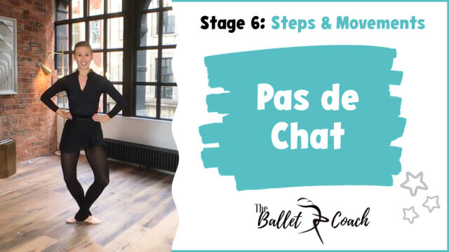 Stage 6 Pas de chat